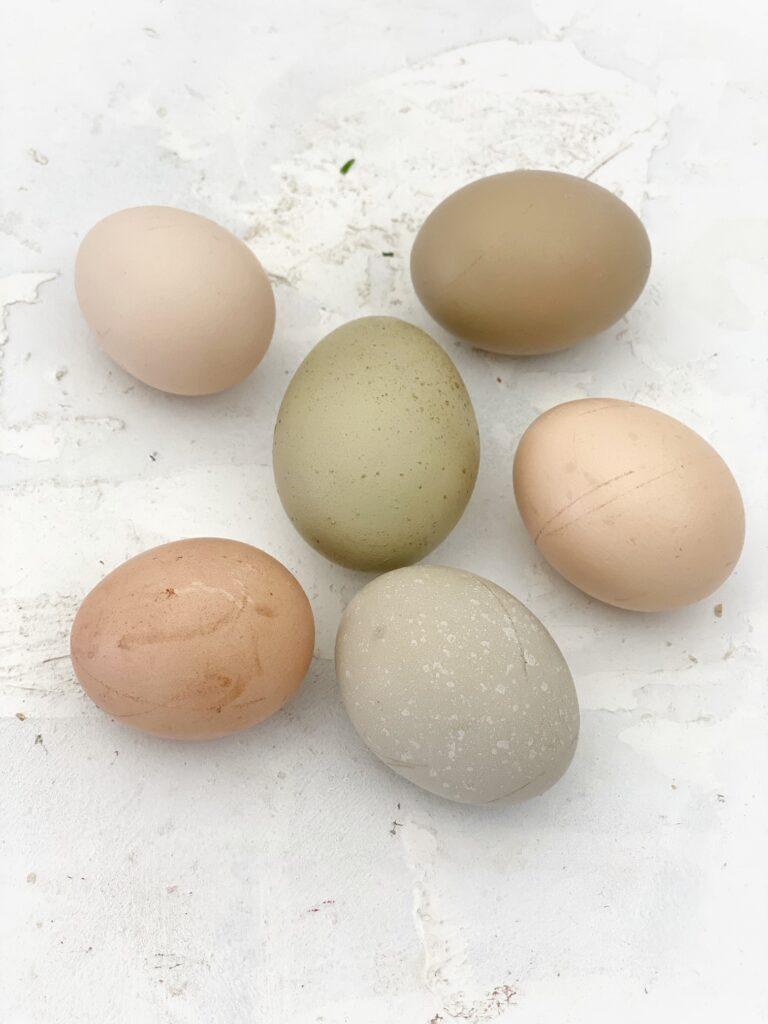 Eier für die Foodblogs Schweiz Challenge im März 2021